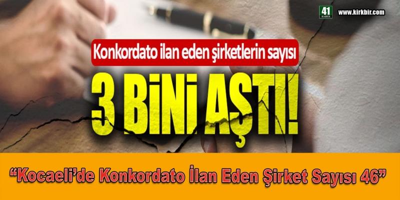 KOCAELİ'DE KONKORDATO İLAN EDEN ŞİRKET SAYISI 46