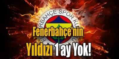 Fenerbahçe'nin yıldızı 1 ay yok!