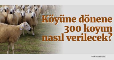 KÖYÜNE DÖNENE 300 KOYUN NASIL VERİLECEK