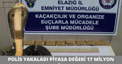 POLİS YAKALADI, PİYASA DEĞERİ 17 MİLYON LİRA