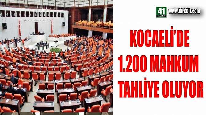 KOCAELİDE 1200 MAHKUM TAHLİYE OLUYOR