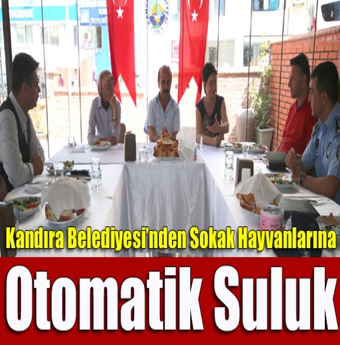 KANDIRA BELEDİYESİNDEN SOKAK HAYVANLARI İÇİN 'OTOMATİK SULUK'